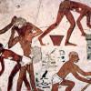 """Dilluns 18/02 """"Aproximació a l'arquitectura a l'antic Egipte: els materials, les eines, els documents, els arquitectes"""""""