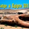 Viatja a Egipte amb la SCE de l' 1 al 13 de març, 2019
