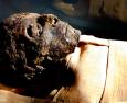 """Dilluns 4/11 """"Les primeres mòmies reials del període Ahmòsida"""""""
